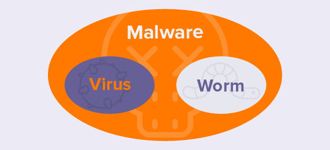 Viruses and worms are two distinct types of malicious software.