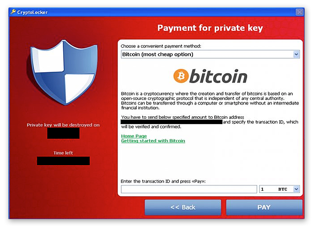 The original CryptoLocker payment window