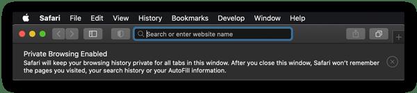 A página inicial no modo privado do Safari.
