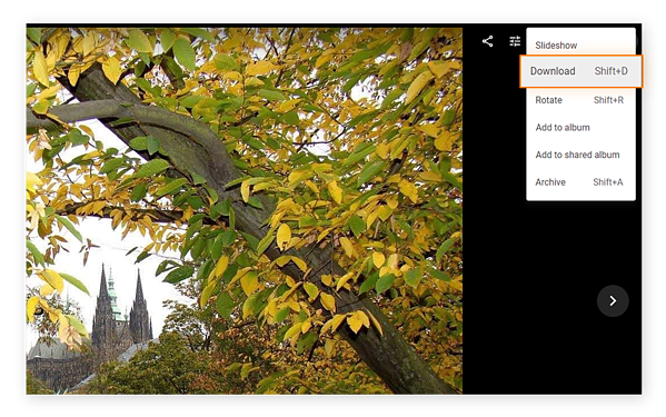 Download individual pictures and videos from Google Photos