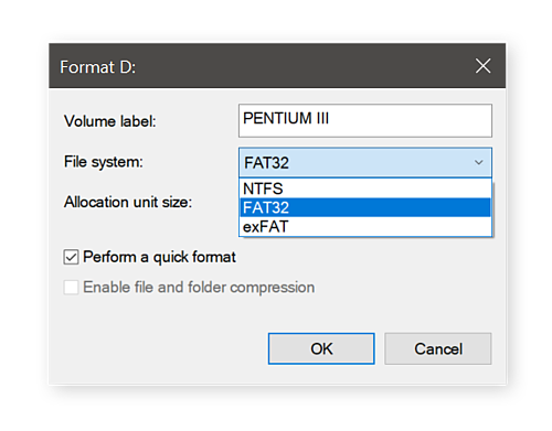 Selecting the file system to format