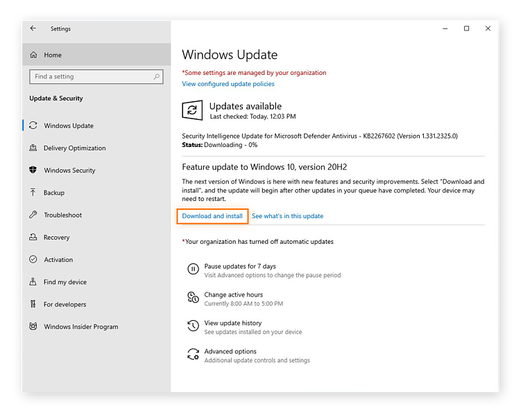 Choosing to download and install a Windows 10 software update