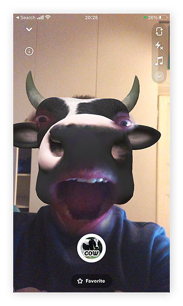With a Snapchat lens, you can change yourself into a cow.