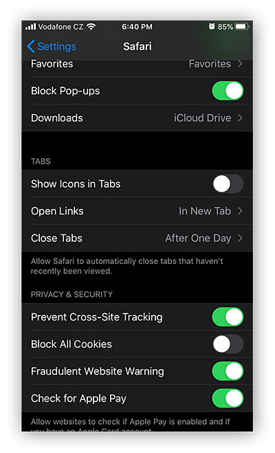 The Safari settings within the Settings app in iOS