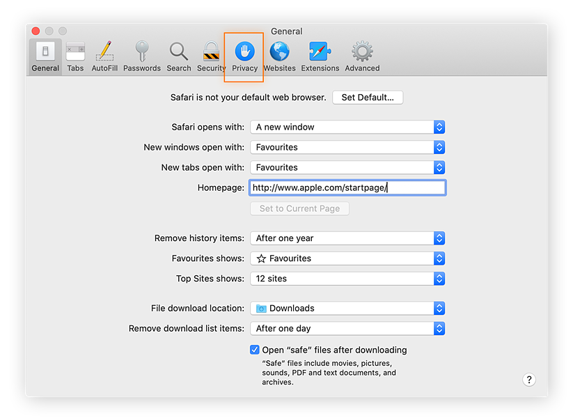 """Click the """"Privacy"""" tab in the top menu to continue to Safari's privacy settings"""