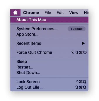 Open About This Mac on macOS.
